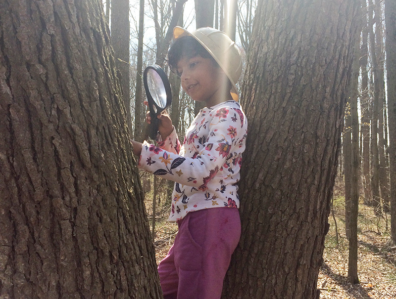 Child uses magnifying glass to look at tree outside the UD Lab School